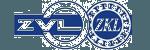 LogoZVLMic